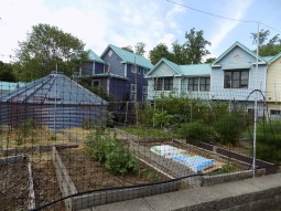 One of 2 community veggie gardens, large cistern can be seen in the back